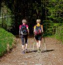 Vlaamse Actieve Senioren nemen nieuwe start